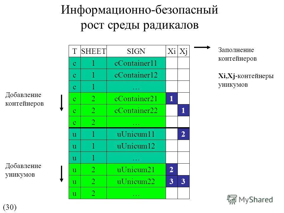 (30) Заполнение контейнеров Xi,Xj-контейнеры уникумов Добавление контейнеров Добавление уникумов Информационно-безопасный рост среды радикалов TSHEETSIGNXiXj c1cContainer11 c1cContainer12 c1… c2cContainer211 c2cContainer22 c2… 1 u1uUnicum11 u1uUnicum