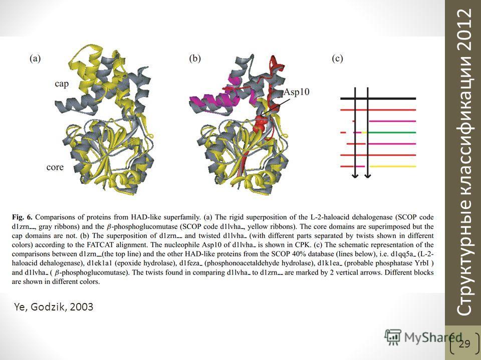 Структурные классификации 2012 29 Ye, Godzik, 2003