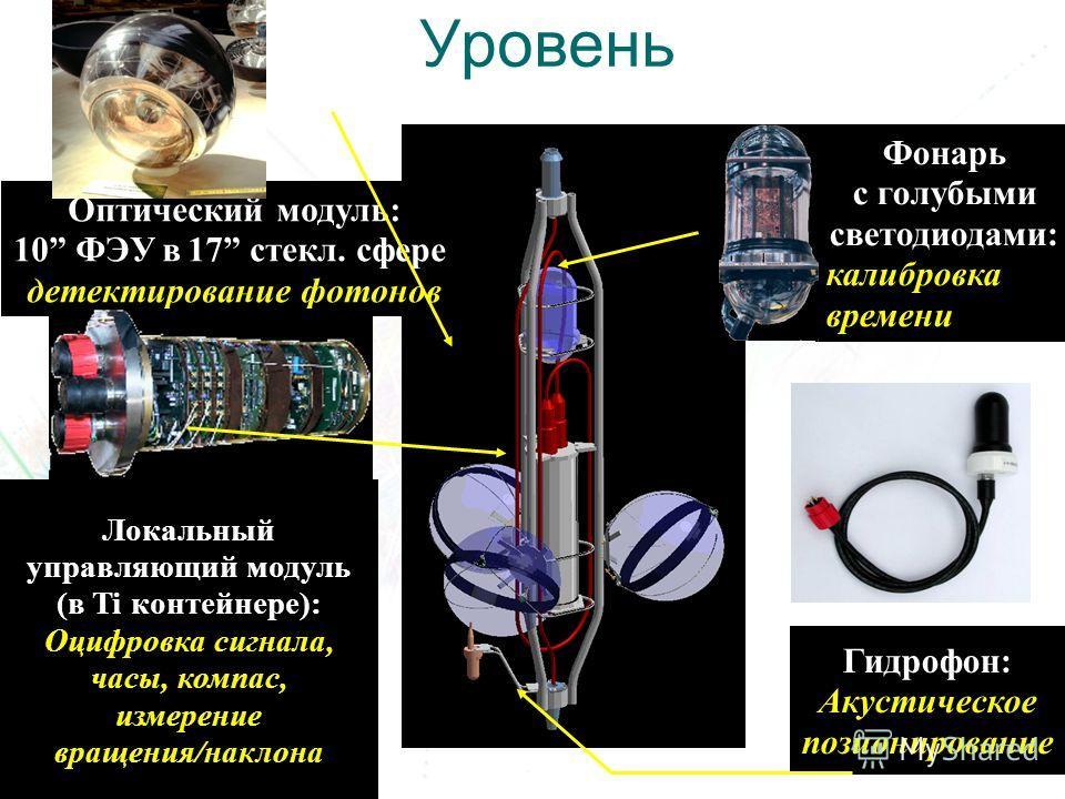 5 Гидрофон: Акустическое позионирование Оптический модуль: 10 ФЭУ в 17 стекл. сфере детектирование фотонов Локальный управляющий модуль (в Ti контейнере): Оцифровка сигнала, часы, компас, измерение вращения/наклона Фонарь с голубыми светодиодами: кал