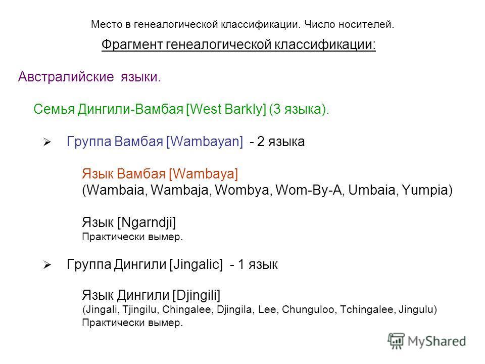 Место в генеалогической классификации. Число носителей. Фрагмент генеалогической классификации: Австралийские языки. Семья Дингили-Вамбая [West Barkly] (3 языка). Группа Вамбая [Wambayan] - 2 языка Язык Вамбая [Wambaya] (Wambaia, Wambaja, Wombya, Wom