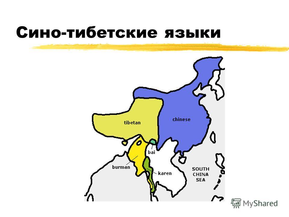 Сино-тибетские языки