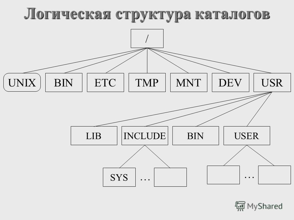 Логическая структура каталогов UNIX / BINETCTMPMNTDEVUSR USER BIN INCLUDE LIB SYS … …
