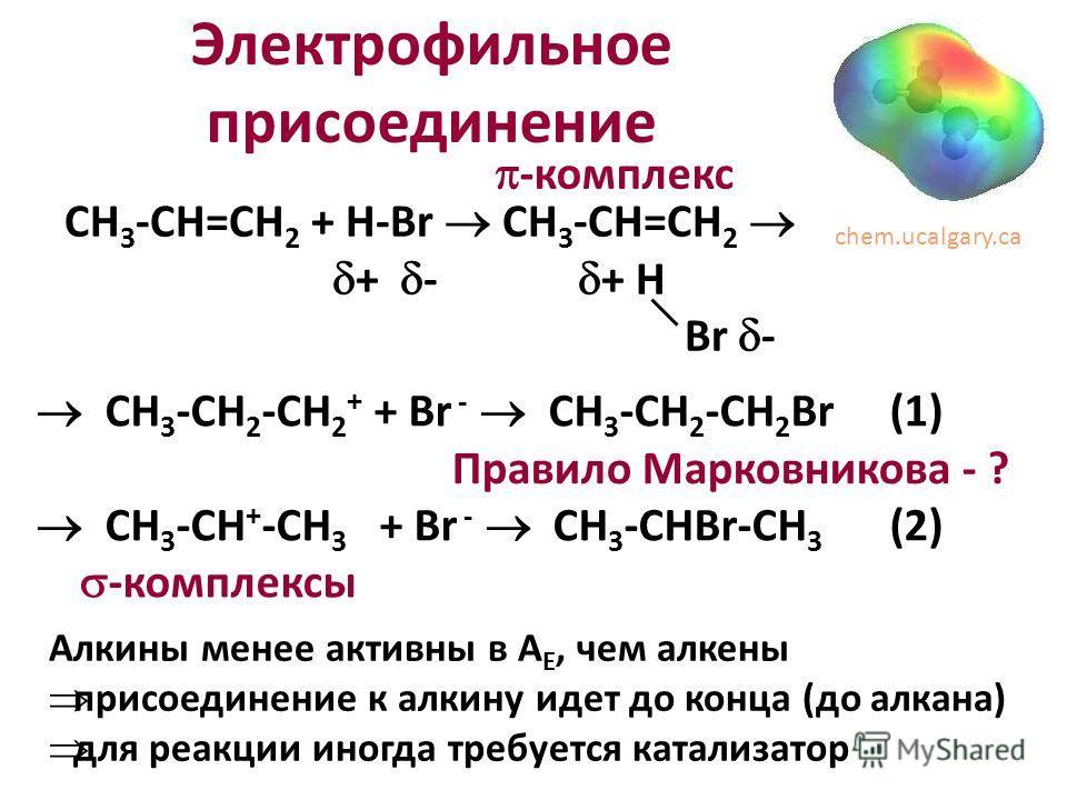Электрофильное присоединение CH 3 -CH 2 -CH 2 + + Br - CH 3 -CH 2 -CH 2 Br (1) CH 3 -CH + -CH 3 + Br - CH 3 -CHBr-CH 3 (2) -комплексы CH 3 -CH=CH 2 + H-Br CH 3 -CH=CH 2 + - + H Br - -комплекс chem.ucalgary.ca Алкины менее активны в А Е, чем алкены пр