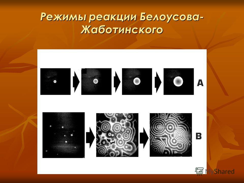 Режимы реакции Белоусова- Жаботинского