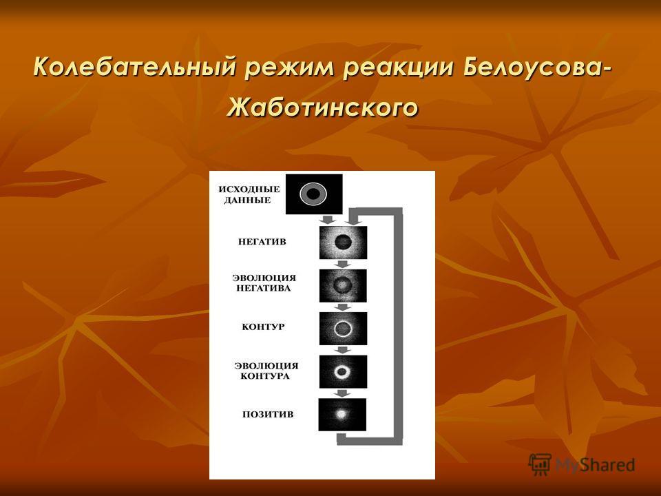 Колебательный режим реакции Белоусова- Жаботинского