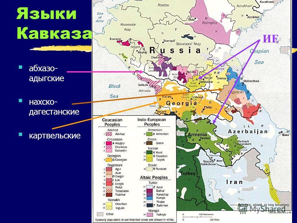 Языки Кавказа абхазо- адыгские нахско- дагестанские картвельские ИЕ
