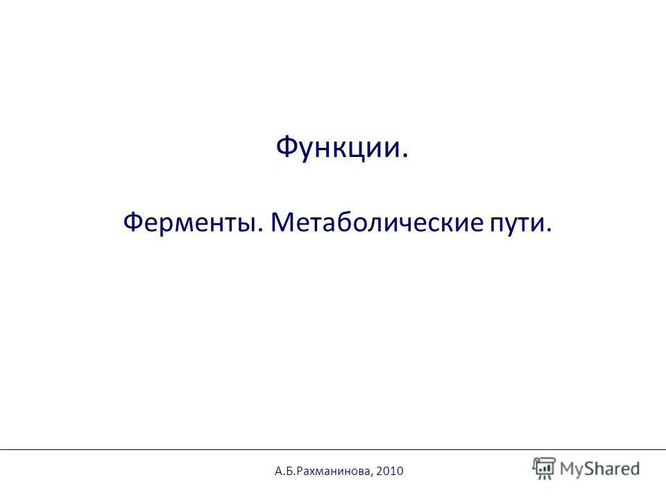 Функции. Ферменты. Метаболические пути. А.Б.Рахманинова, 2010