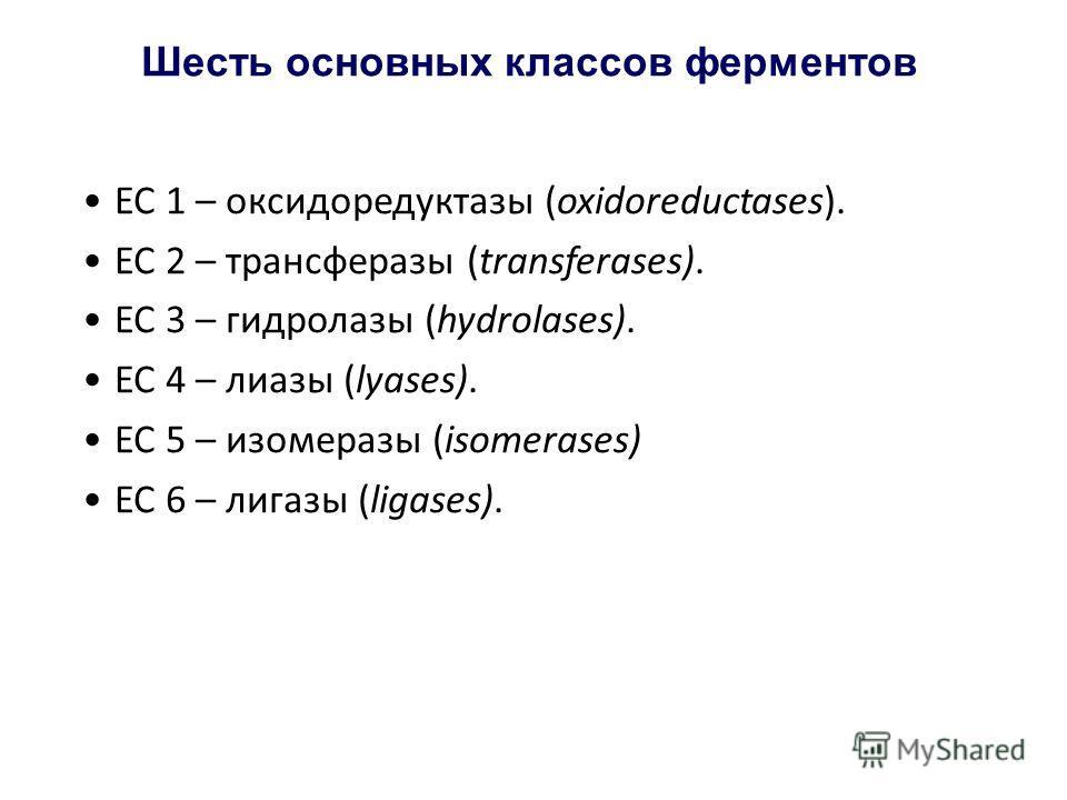 Шесть основных классов ферментов ЕС 1 – оксидоредуктазы (oxidoreductases). ЕС 2 – трансферазы (transferases). ЕС 3 – гидролазы (hydrolases). ЕС 4 – лиазы (lyases). ЕС 5 – изомеразы (isomerases) ЕС 6 – лигазы (ligases).