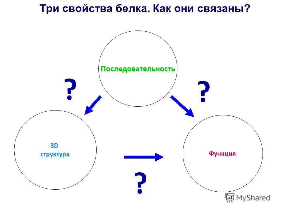 Три свойства белка. Как они связаны?Последовательность Функция 3Dструктура ? ? ?