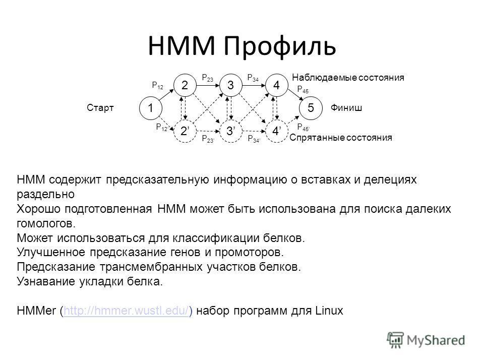 HMM Профиль 1 2 2 3 3 4 4 5 P 12 P 23 P 34 P 45 P 12 P 23 P 34 P 45 СтартФиниш Наблюдаемые состояния Спрятанные состояния HMM содержит предсказательную информацию о вставках и делециях раздельно Хорошо подготовленная HMM может быть использована для п