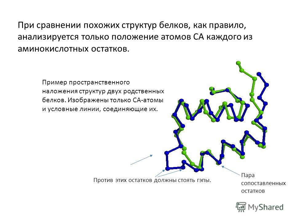 При сравнении похожих структур белков, как правило, анализируется только положение атомов CA каждого из аминокислотных остатков. Пример пространственного наложения структур двух родственных белков. Изображены только CA-атомы и условные линии, соединя