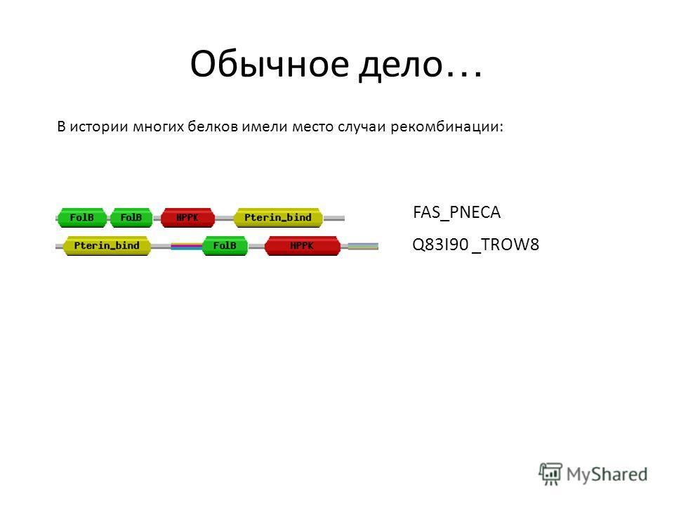 Обычное дело … В истории многих белков имели место случаи рекомбинации: FAS_PNECA Q83I90 _TROW8