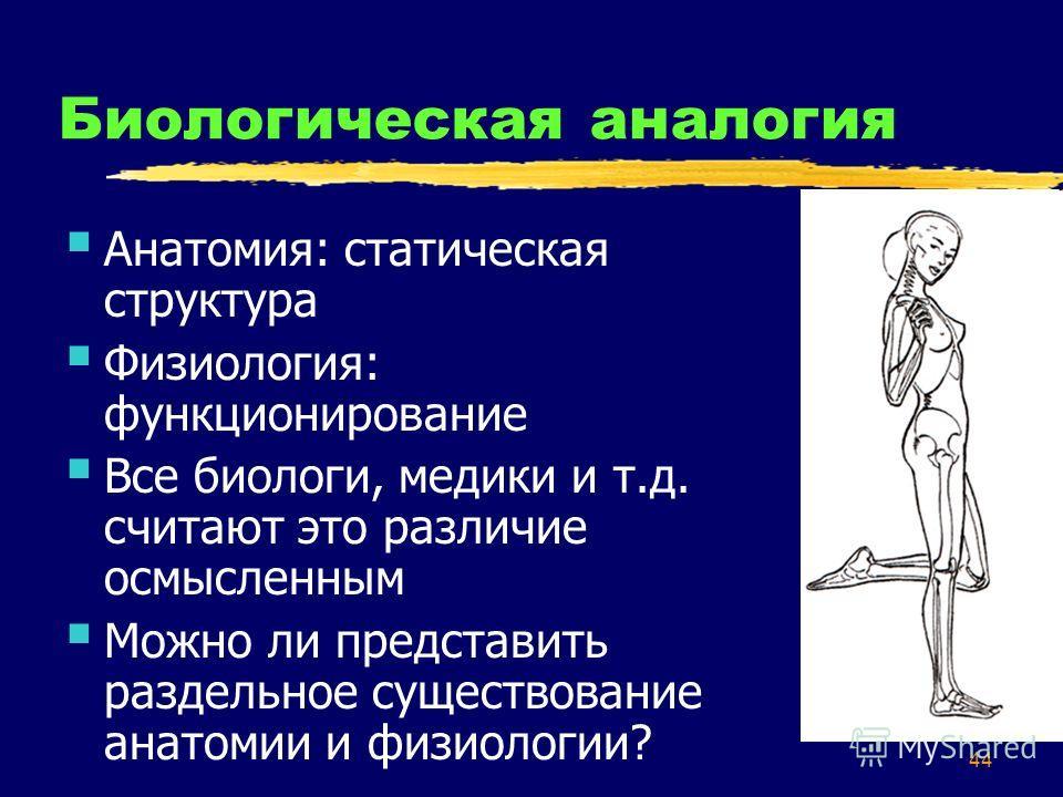 44 Биологическая аналогия Анатомия: статическая структура Физиология: функционирование Все биологи, медики и т.д. считают это различие осмысленным Можно ли представить раздельное существование анатомии и физиологии?