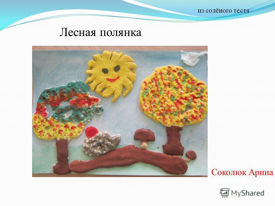 Лесная полянка Соколюк Арина из солёного теста