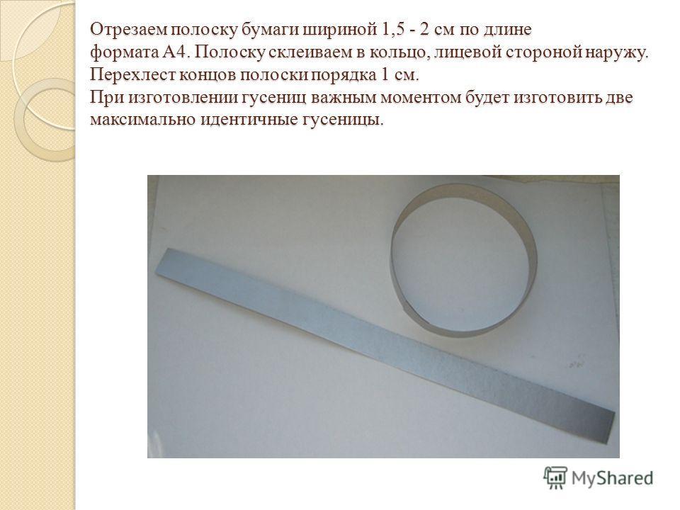 Отрезаем полоску бумаги шириной 1,5 - 2 см по длине формата А4. Полоску склеиваем в кольцо, лицевой стороной наружу. Перехлест концов полоски порядка 1 см. При изготовлении гусениц важным моментом будет изготовить две максимально идентичные гусеницы.