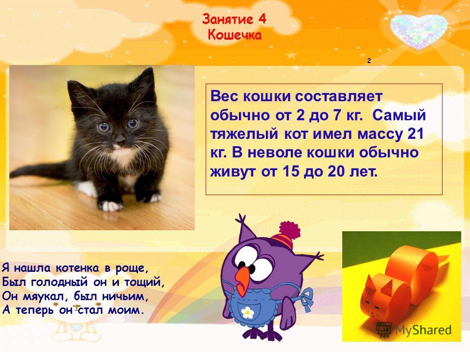 Занятие 4 Кошечка Я нашла котенка в роще, Был голодный он и тощий, Он мяукал, был ничьим, А теперь он стал моим. 2 Вес кошки составляет обычно от 2 до 7 кг. Самый тяжелый кот имел массу 21 кг. В неволе кошки обычно живут от 15 до 20 лет.
