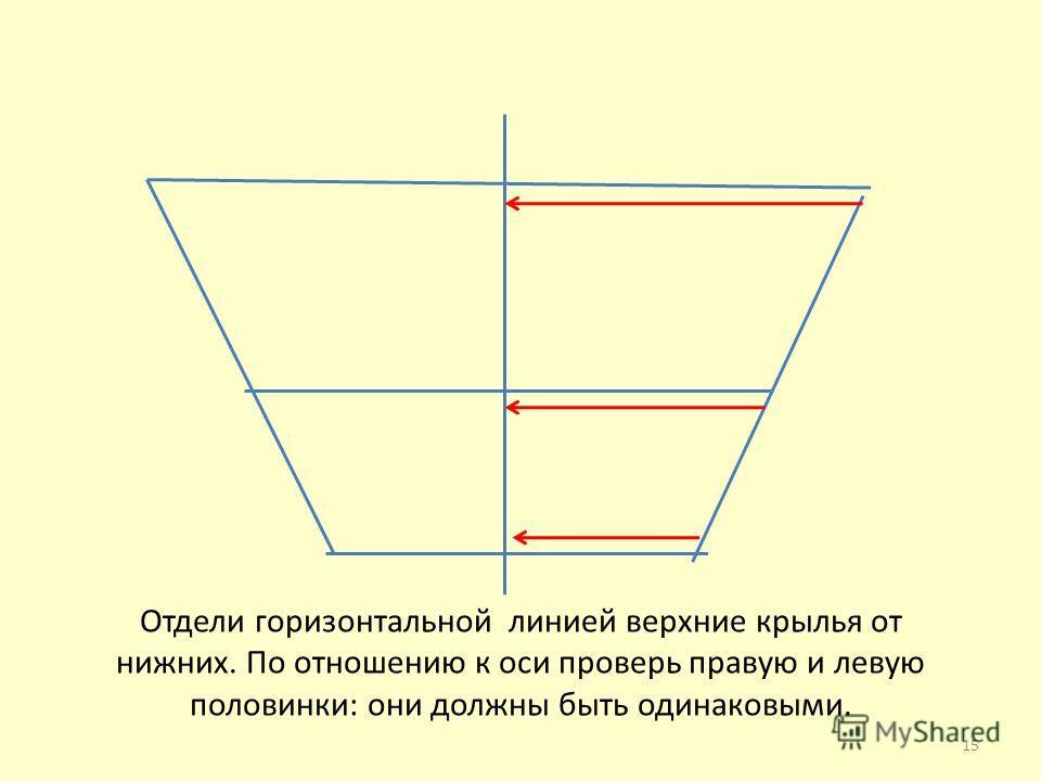 Отдели горизонтальной линией верхние крылья от нижних. По отношению к оси проверь правую и левую половинки: они должны быть одинаковыми. 15