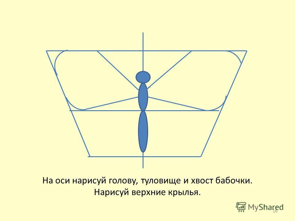 На оси нарисуй голову, туловище и хвост бабочки. Нарисуй верхние крылья. 16