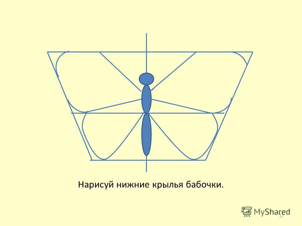Нарисуй нижние крылья бабочки. 17