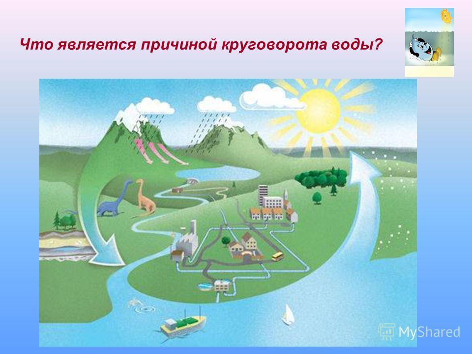 Что является причиной круговорота воды?
