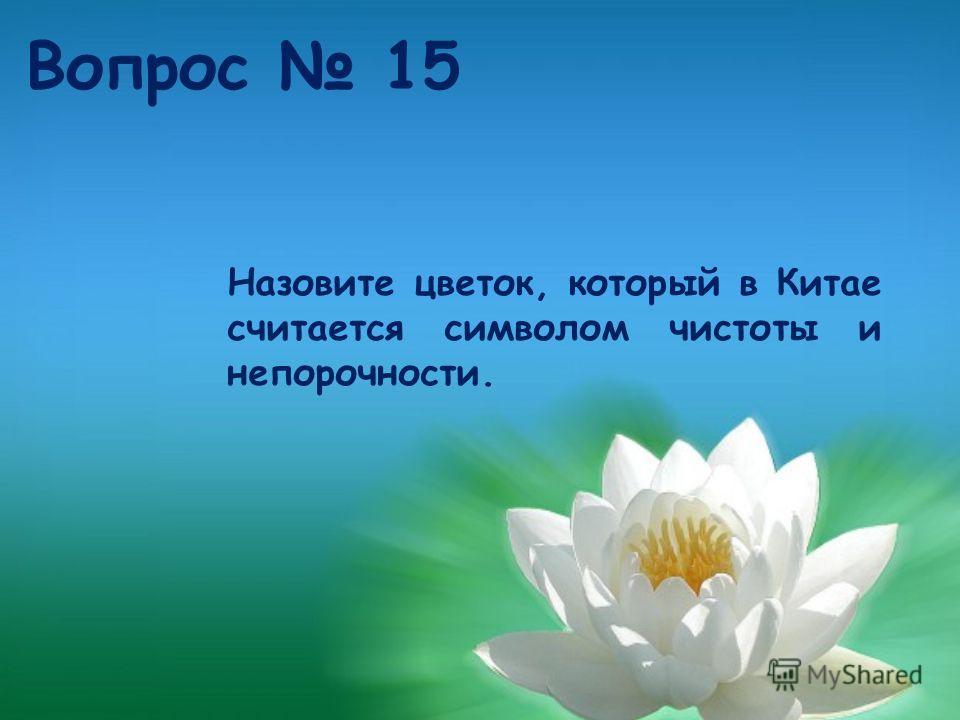 Назовите цветок, который в Китае считается символом чистоты и непорочности. Вопрос 15