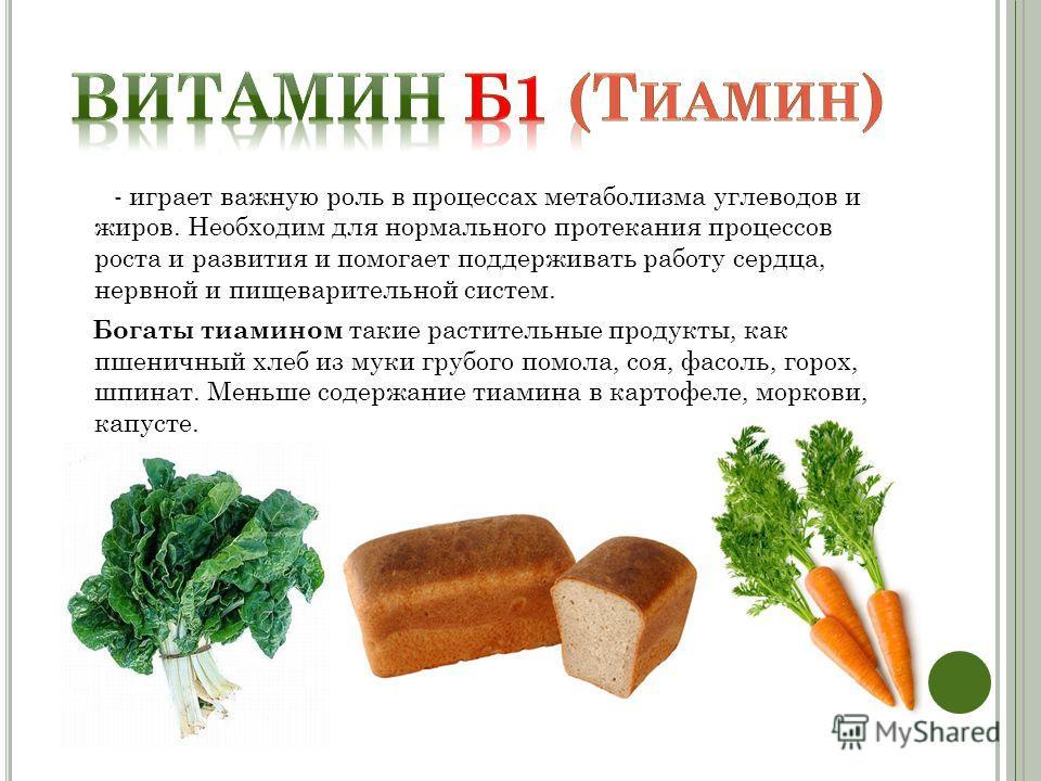 - играет важную роль в процессах метаболизма углеводов и жиров. Необходим для нормального протекания процессов роста и развития и помогает поддерживать работу сердца, нервной и пищеварительной систем. Богаты тиамином такие растительные продукты, как
