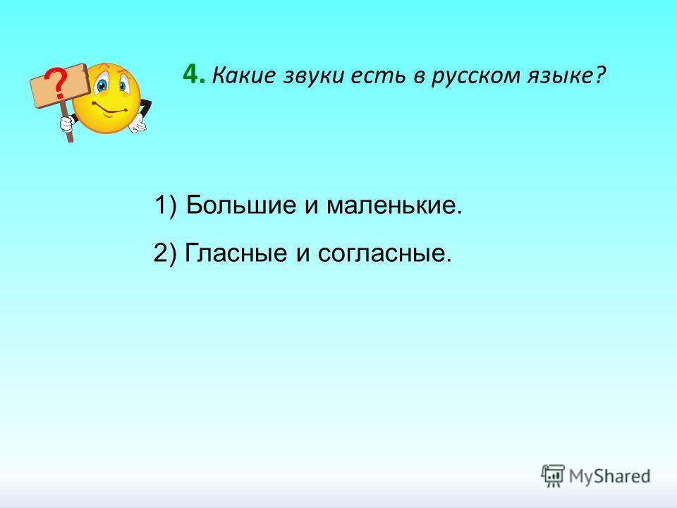 4. Какие звуки есть в русском языке? 1) Большие и маленькие. 2) Гласные и согласные.