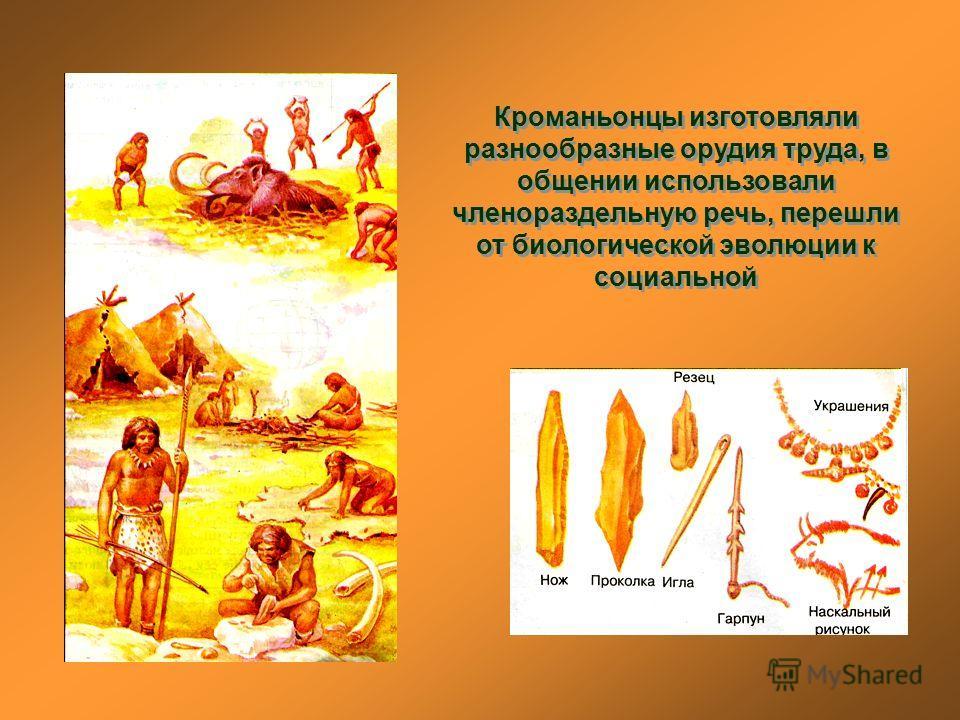 Кроманьонцы изготовляли разнообразные орудия труда, в общении использовали членораздельную речь, перешли от биологической эволюции к социальной