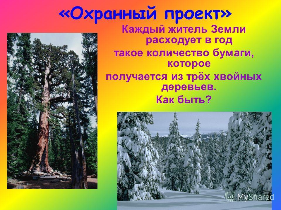 «Охранный проект» Каждый житель Земли расходует в год такое количество бумаги, которое получается из трёх хвойных деревьев. Как быть?
