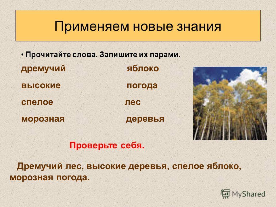 Применяем новые знания Прочитайте слова. Запишите их парами. дремучий яблоко высокие погода спелое лес морозная деревья Проверьте себя. Дремучий лес, высокие деревья, спелое яблоко, морозная погода.