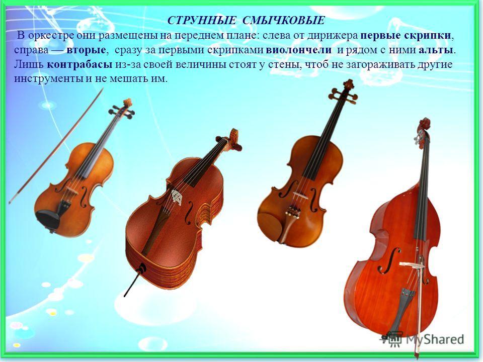 СТРУННЫЕ СМЫЧКОВЫЕ В оркестре они размещены на переднем плане: слева от дирижера первые скрипки, справа вторые, сразу за первыми скрипками виолончели и рядом с ними альты. Лишь контрабасы из-за своей величины стоят у стены, чтоб не загораживать други