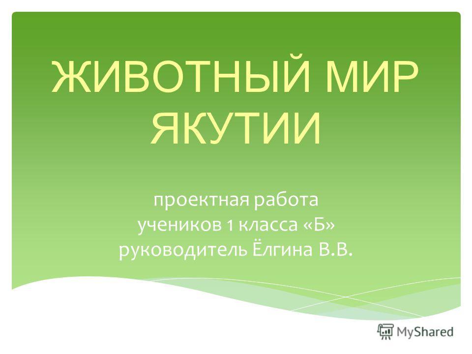 ЖИВОТНЫЙ МИР ЯКУТИИ проектная работа учеников 1 класса «Б» руководитель Ёлгина В.В.
