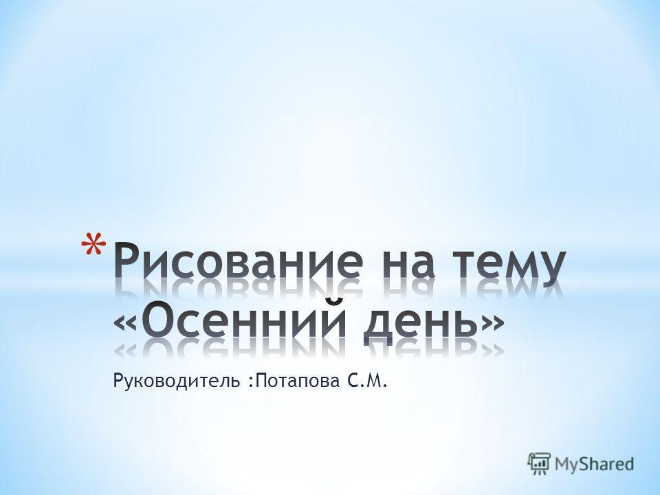 Руководитель :Потапова С.М.
