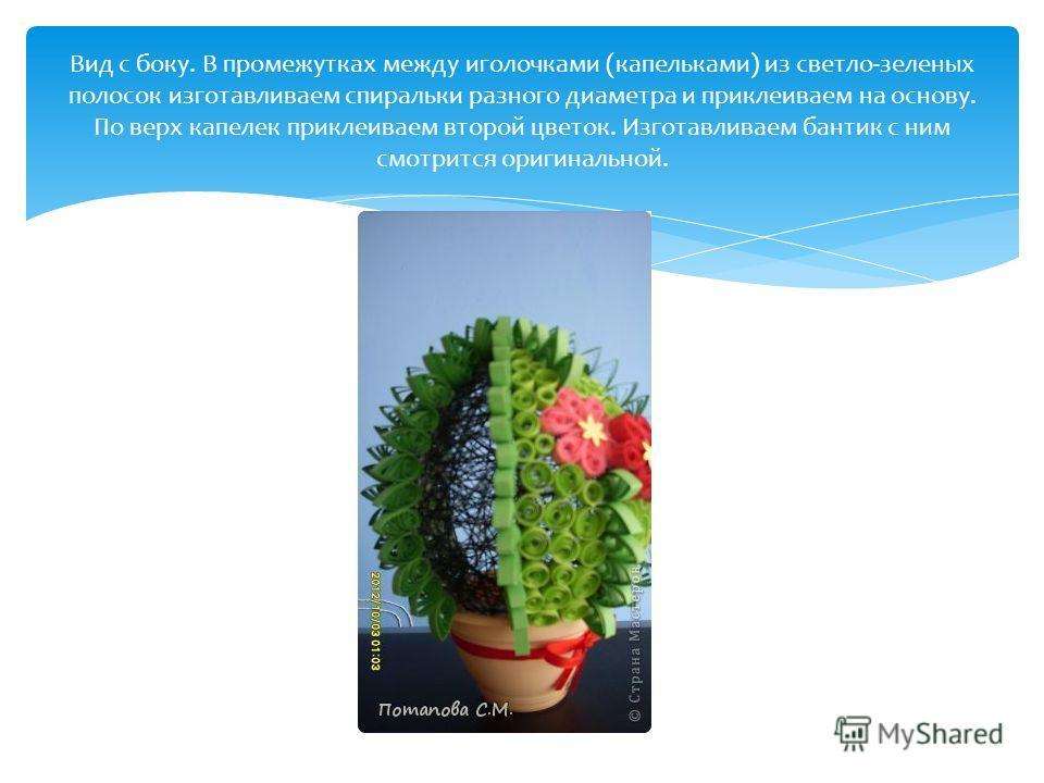 Вид с боку. В промежутках между иголочками (капельками) из светло-зеленых полосок изготавливаем спиральки разного диаметра и приклеиваем на основу. По верх капелек приклеиваем второй цветок. Изготавливаем бантик с ним смотрится оригинальной.