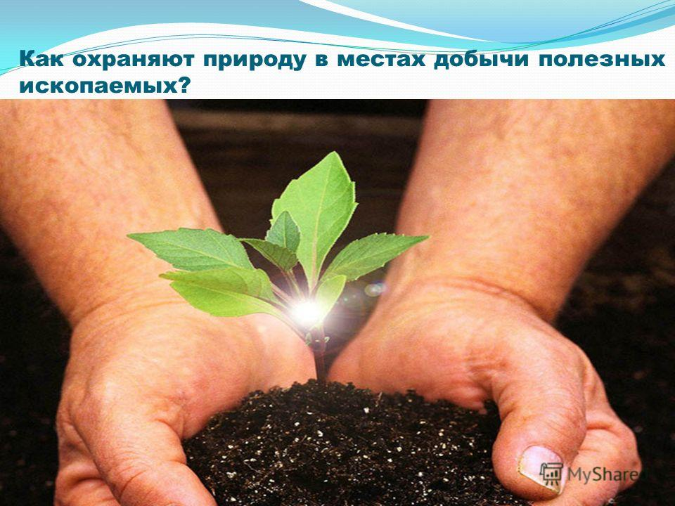 Как охраняют природу в местах добычи полезных ископаемых?