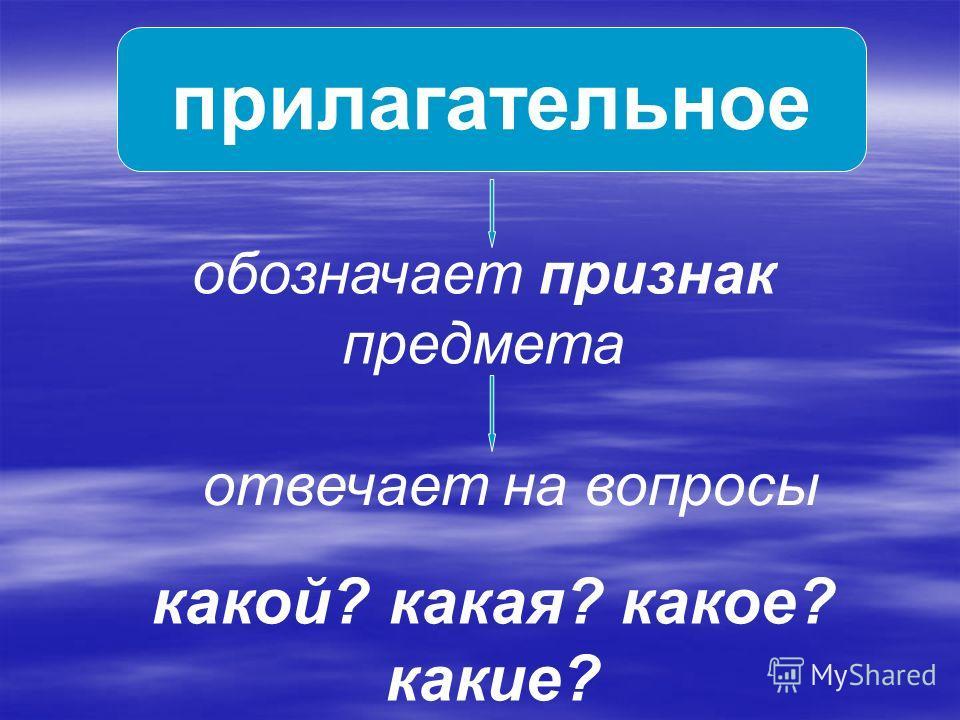 прилагательное обозначает признак предмета отвечает на вопросы какой? какая? какое? какие?