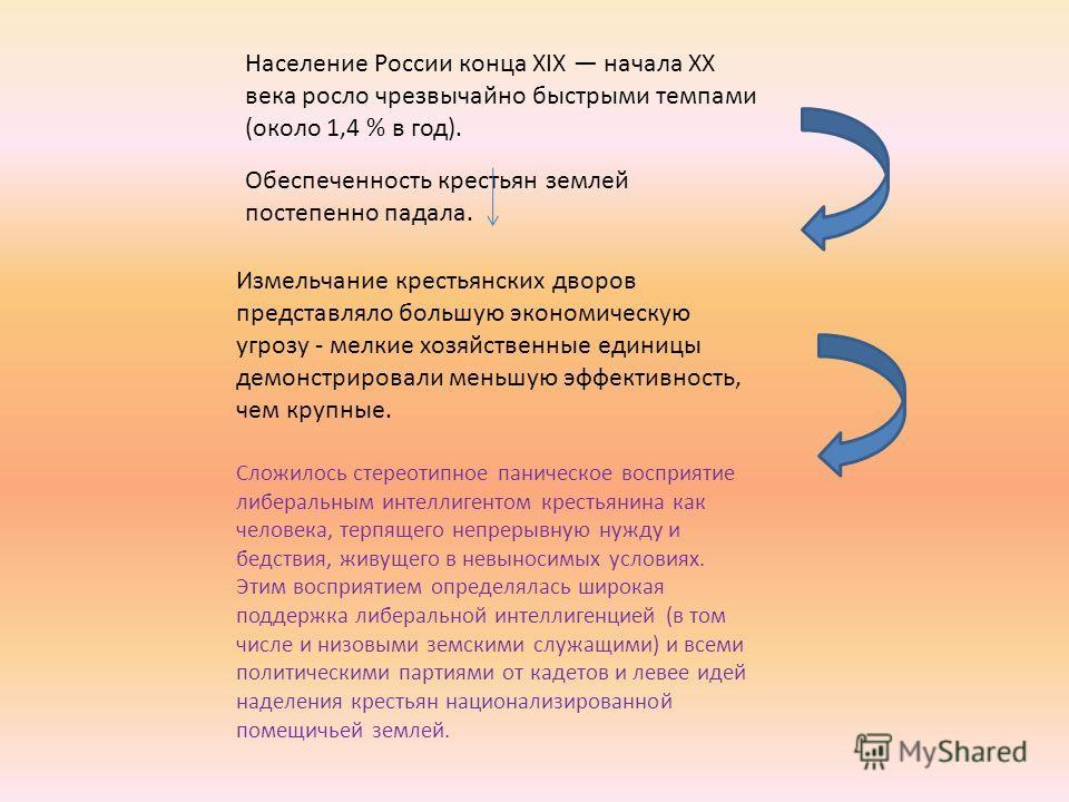 Население России конца XIX начала XX века росло чрезвычайно быстрыми темпами (около 1,4 % в год). Обеспеченность крестьян землей постепенно падала. Измельчание крестьянских дворов представляло большую экономическую угрозу - мелкие хозяйственные едини