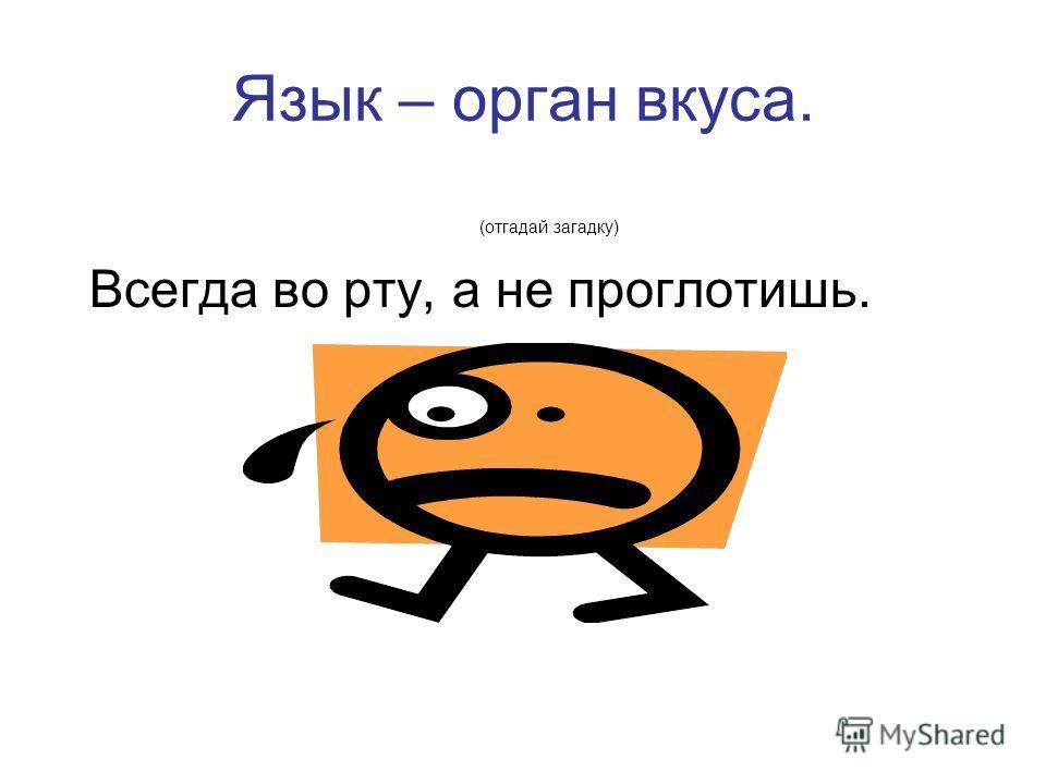 Язык – орган вкуса. (отгадай загадку) Всегда во рту, а не проглотишь.