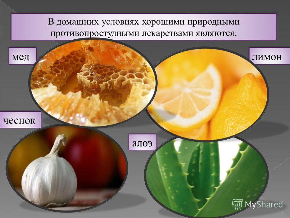 В домашних условиях хорошими природными противопростудными лекарствами являются: мед мед лимон лимон чеснок чеснок алоэ алоэ