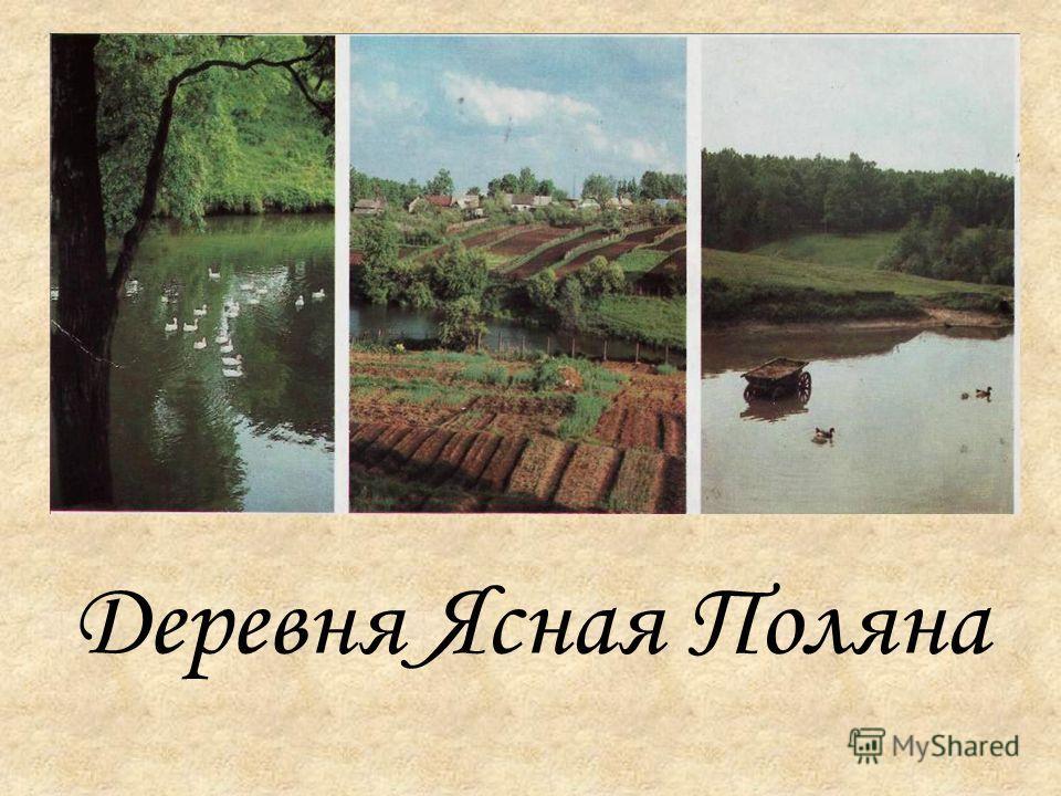 Деревня Ясная Поляна