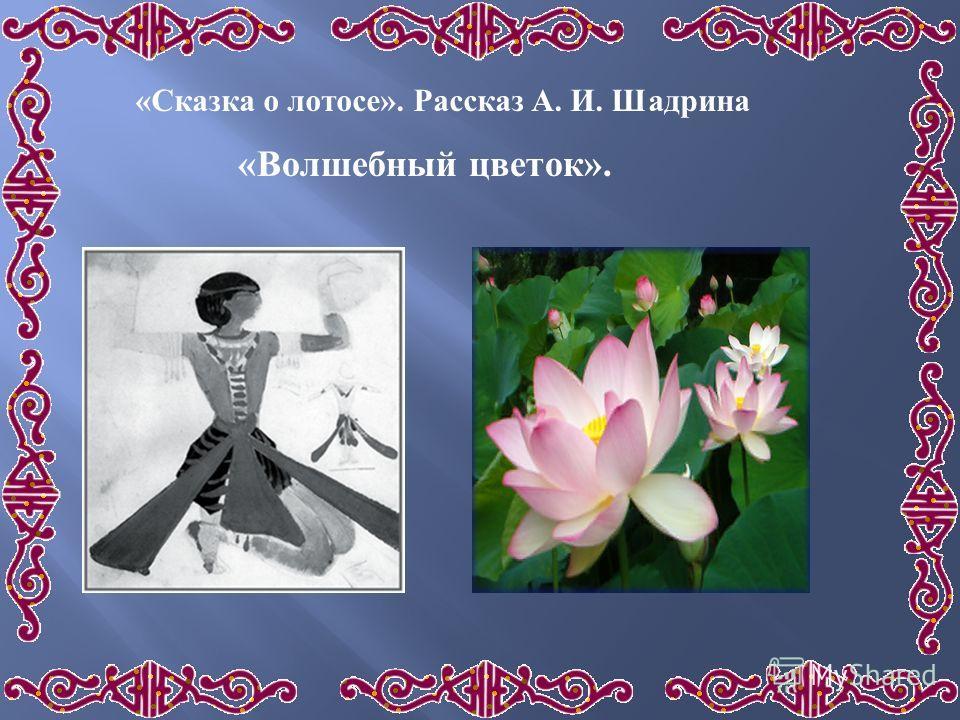 « Сказка о лотосе ». Рассказ А. И. Шадрина « Волшебный цветок ».