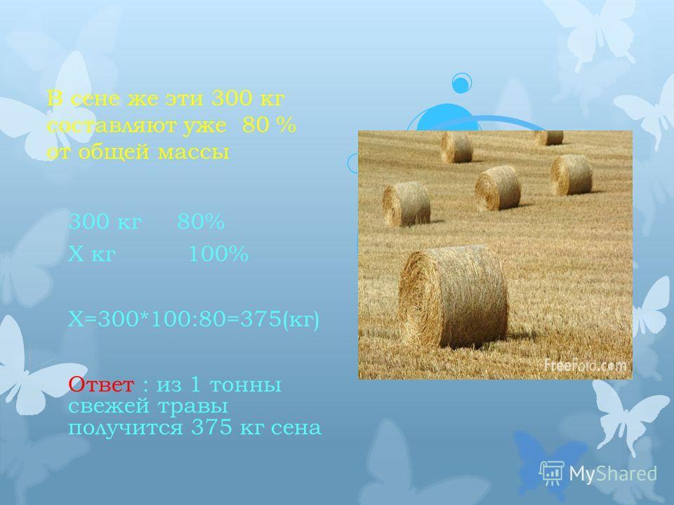 В сене же эти 300 кг составляют уже 80 % от общей массы 300 кг 80% Х кг 100% Х=300*100:80=375(кг) Ответ : из 1 тонны свежей травы получится 375 кг сена