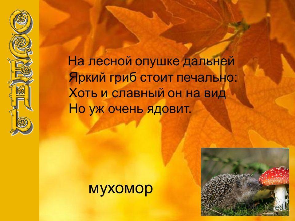 мухомор Н а лесной опушке дальней Яркий гриб стоит печально: Хоть и славный он на вид Но уж очень ядовит.