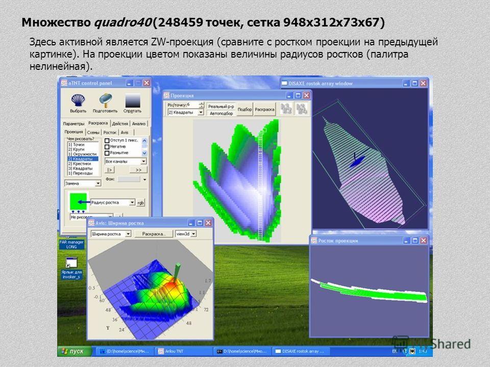 Множество quadro40 (248459 точек, сетка 948x312x73x67) Здесь активной является ZW-проекция (сравните с ростком проекции на предыдущей картинке). На проекции цветом показаны величины радиусов ростков (палитра нелинейная).