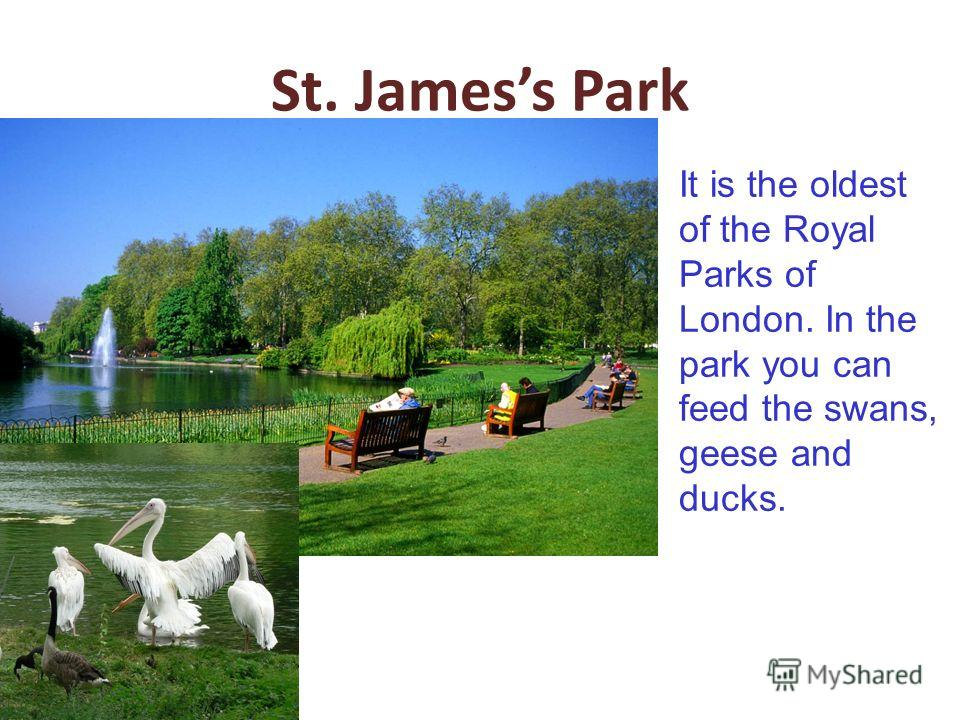 St. Jamess Park It is the oldest of the Royal Parks of London. In the park you can feed the swans, geese and ducks.