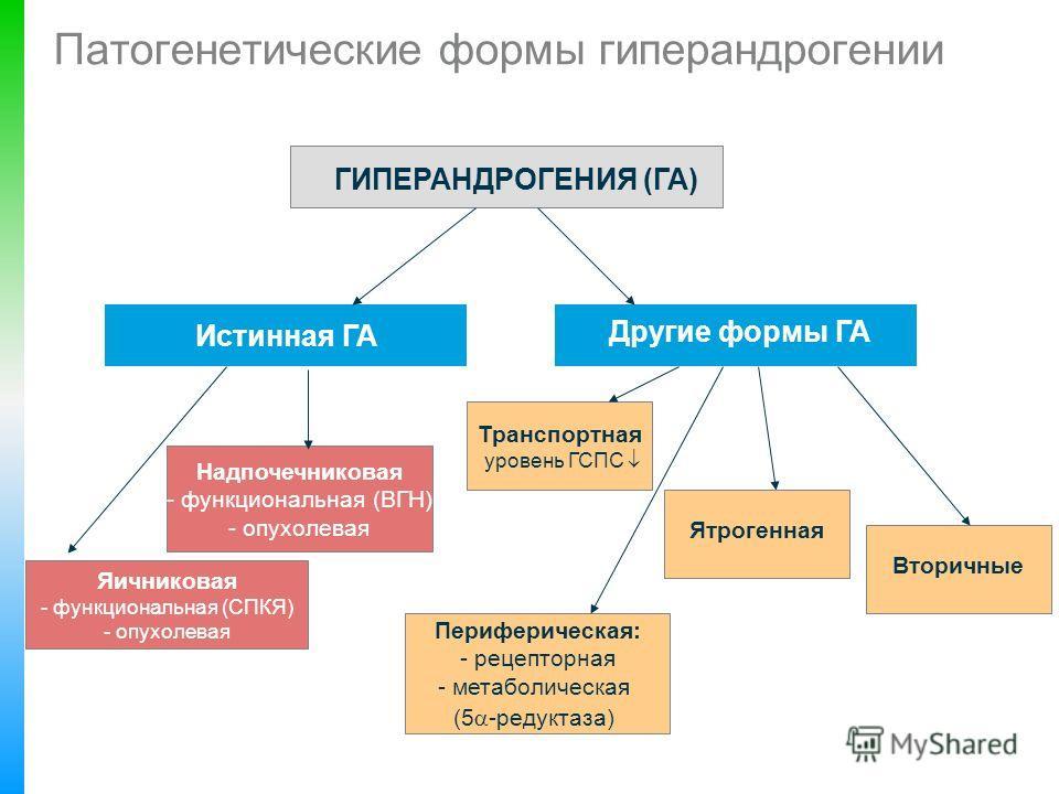 Патогенетические формы гиперандрогении ГИПЕРАНДРОГЕНИЯ (ГА) Истинная ГА Другие формы ГА Надпочечниковая - функциональная (ВГН) - опухолевая Яичниковая - функциональная (СПКЯ) - опухолевая Периферическая: - рецепторная - метаболическая (5 -редуктаза)