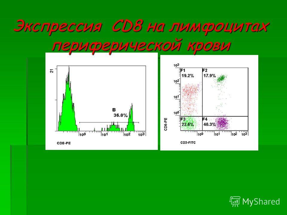 Экспрессия CD8 на лимфоцитах периферической крови