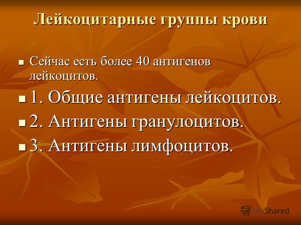 Лейкоцитарные группы крови Сейчас есть более 40 антигенов лейкоцитов. Сейчас есть более 40 антигенов лейкоцитов. 1. Общие антигены лейкоцитов. 1. Общие антигены лейкоцитов. 2. Антигены гранулоцитов. 2. Антигены гранулоцитов. 3. Антигены лимфоцитов. 3