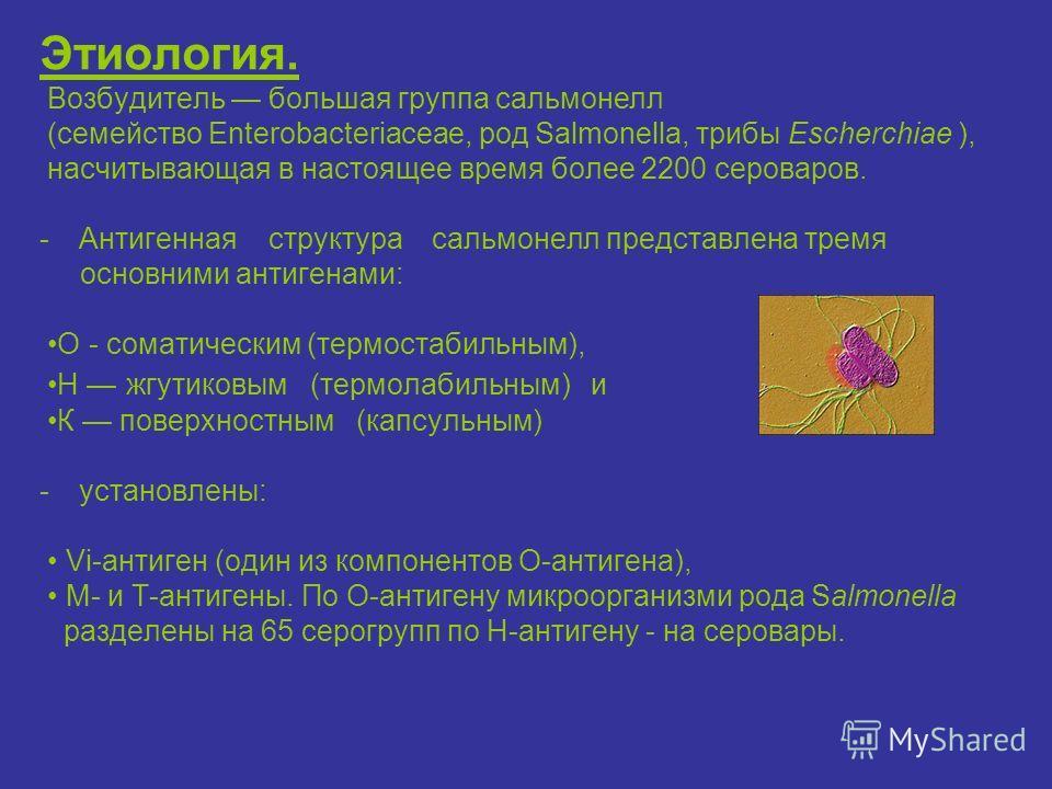 Этиология. Возбудитель большая группа сальмонелл (семейство Enterobacteriaceae, род Salmonella, трибы Еscherchiae ), насчитывающая в настоящее время более 2200 сероваров. -Антигенная структура сальмонелл представлена тремя основними антигенами: О - с