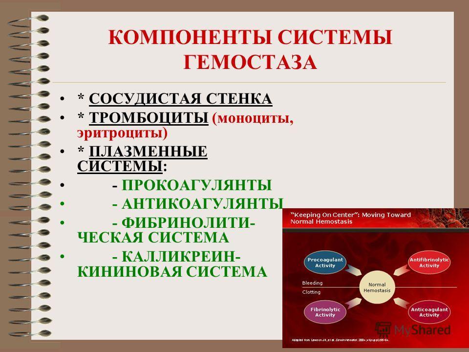 КОМПОНЕНТЫ СИСТЕМЫ ГЕМОСТАЗА * СОСУДИСТАЯ СТЕНКА * ТРОМБОЦИТЫ (моноциты, эритроциты) * ПЛАЗМЕННЫЕ СИСТЕМЫ: - ПРОКОАГУЛЯНТЫ - АНТИКОАГУЛЯНТЫ - ФИБРИНОЛИТИ- ЧЕСКАЯ СИСТЕМА - КАЛЛИКРЕИН- КИНИНОВАЯ СИСТЕМА